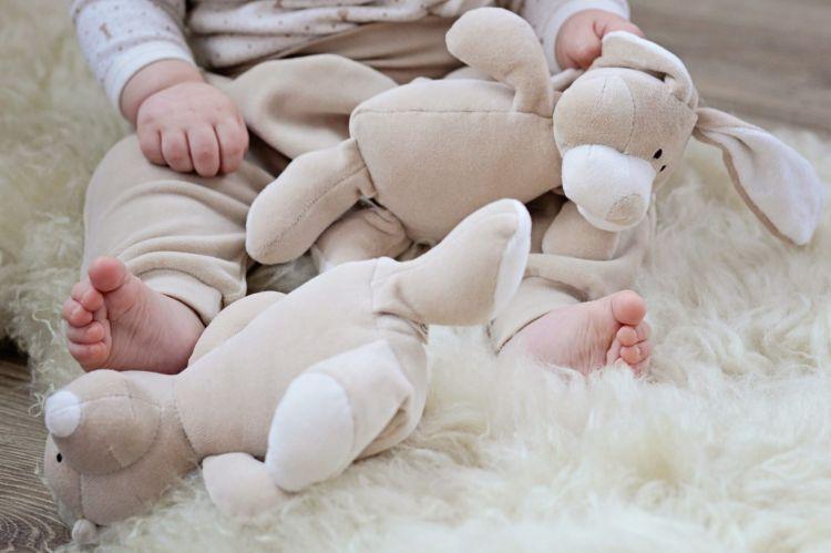 Wooly Organic - Organiczna Grzechotka Classic Bunny Zajączek 17cm