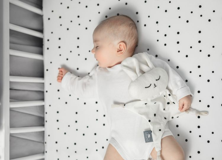 Sleepee - Sleepuś Pierwsza Przytulanka DouDou