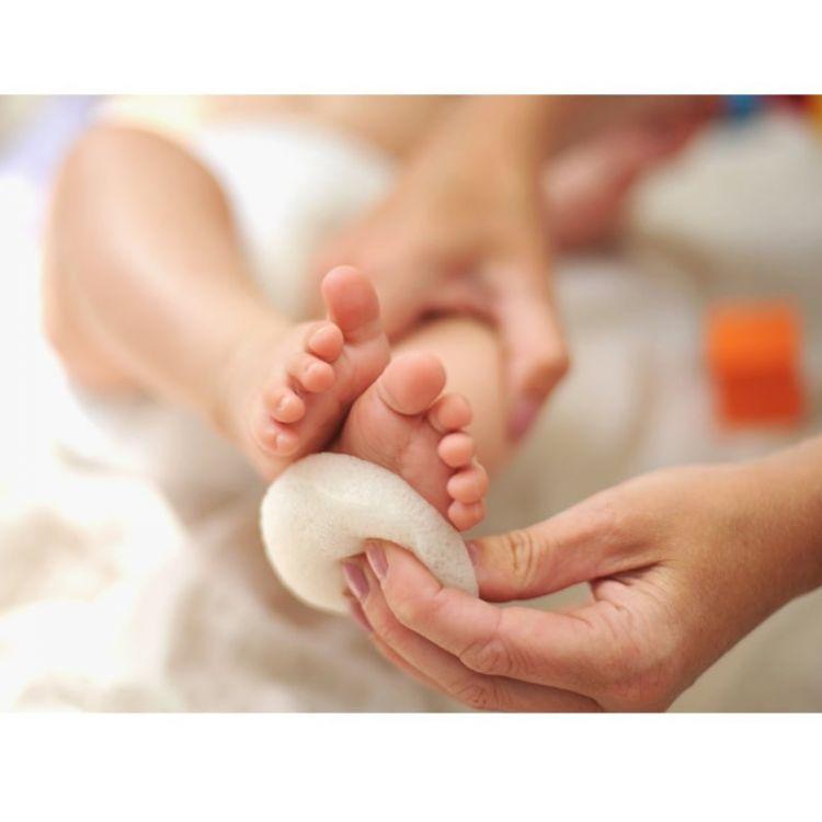 Kokoso Baby - Natural Baby Bath Sponge BIO Roślinna Gąbka Konjac do Kąpieli Noworodka i Niemowlaka