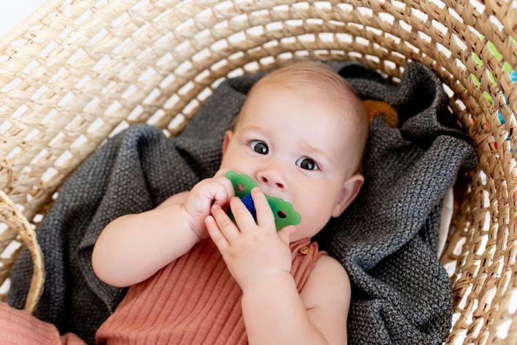 Raz Baby - Gryzaczek Soczysta Jeżyna