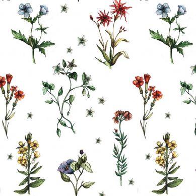 Dekornik - Tapeta Wild Flowers and Herbs