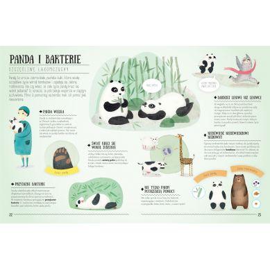 Wydawnictwo Tata Robi Książki - Niesamowita Natura. Zdumiewające Przyjaźnie