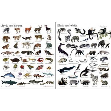 Wydawnictwo Usborne Publishing - 1000 Animals