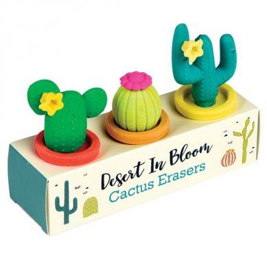 Rex - Zestaw Gumek do Ścierania Cactus