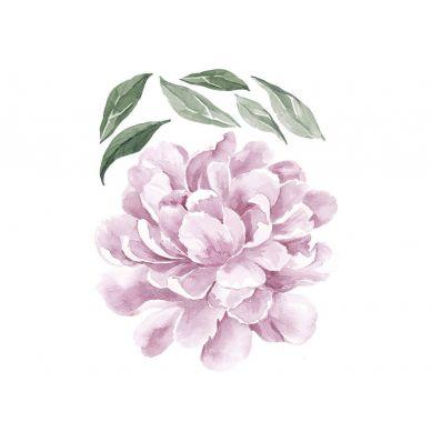 Pastelowelove - Naklejka na Ścianę Piwonia Liliowa 50cm