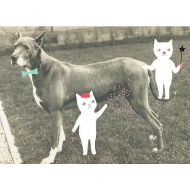 OMM Design - Plakat Pies i Koty