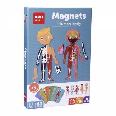 Apli Kids - Magnetyczna Układanka Ciało Człowieka 5+