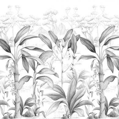 Dekornik - Tapeta Rajska Dżungla Black&White 250cm