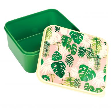 Rex - Lunchbox Tropical Palm