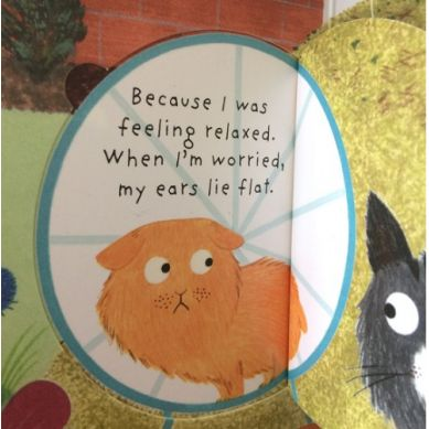 Wydawnictwo Usborne Publishing - Lift the flap questions and answears: how do animals talk?