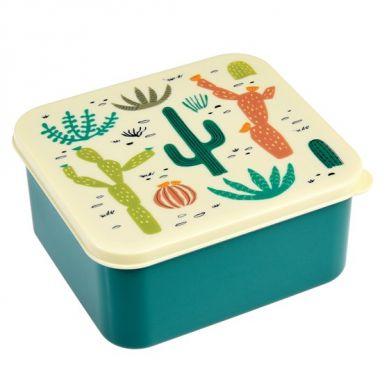 Rex - Lunchbox Desert in Bloom