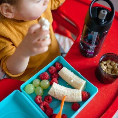 Carl Oscar - Kids Sandwich Box Pojemnik na Przekąski i Kanapki Lime Monkey
