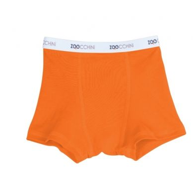 Zoocchini - Bokserki Chłopięce Orange 4-5 lat