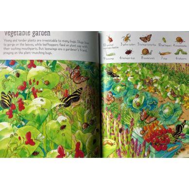 Wydawnictwo Usborne Publishing - 1001 bugs to spot