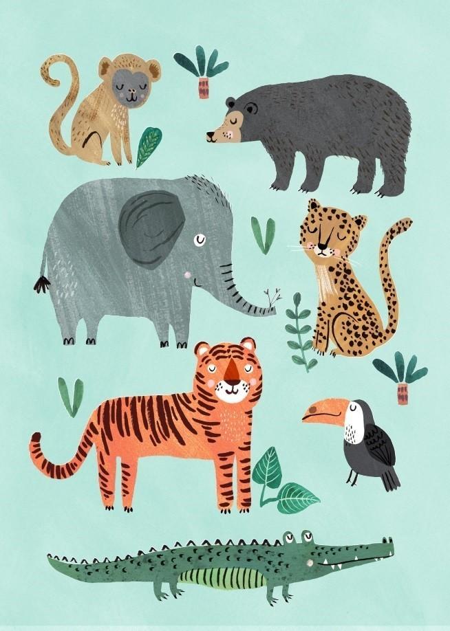 Petit Monkey - Pocztówka/Kartka na Życzenia Wild Animals